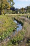 Hochwassersicherer Ausbau Fürstenauer Mühlenbach